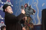 Носорогов в Граффити