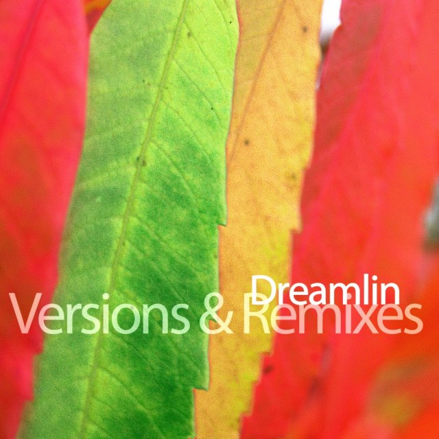 "Dreamlin ""Versions & Remixes"""