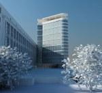 Анна Буланова: офисное здание